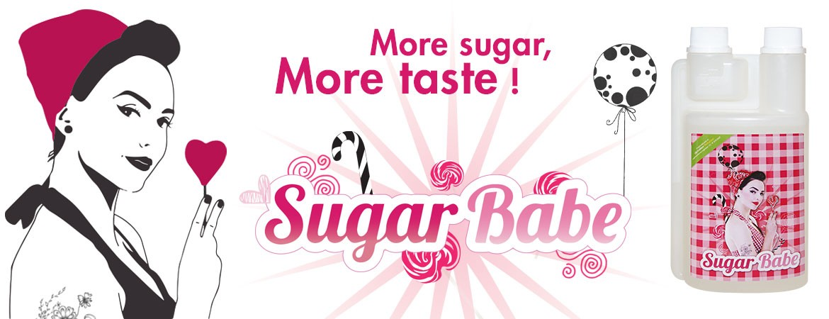 Sugar Babe : More sugar, more taste !